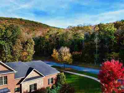 Huntsville Residential Lots & Land For Sale: Marina Park Drive
