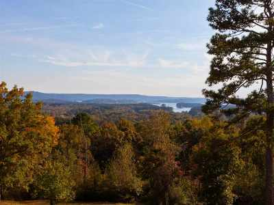 Guntersville Residential Lots & Land For Sale: 1355-2 Bakers Chapel Lane