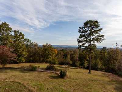 Guntersville Residential Lots & Land For Sale: 1355-3 Bakers Chapel Lane