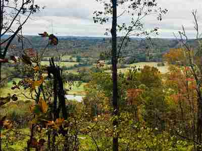 Collinsville Residential Lots & Land For Sale: County Road 822