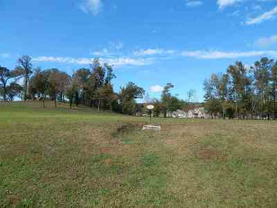 Guntersville Residential Lots & Land For Sale: 34 Georgia Mountain Road