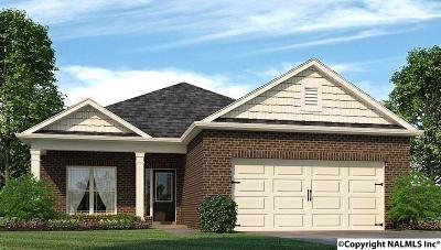 Single Family Home For Sale: 27681 Kosar Crossing