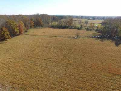 Hazel Green Residential Lots & Land For Sale: Ready Section Road