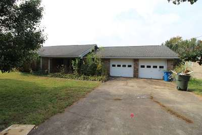 Albertville Single Family Home For Sale: 103 Ohara Drive