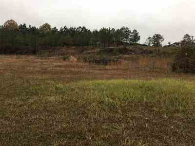 Guntersville Residential Lots & Land For Sale: 1 Us Highway 431