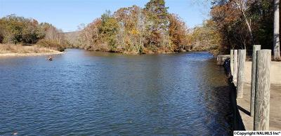 Residential Lots & Land For Sale: 19 County Road 137