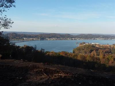 Guntersville Residential Lots & Land For Sale: 3919 Pecan Drive