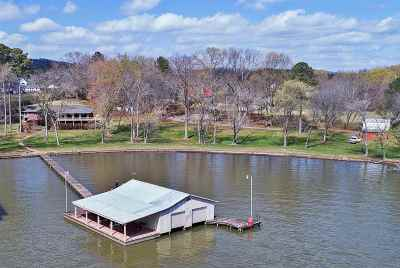 Scottsboro Single Family Home For Sale: 1840 Skyline Shores Drive