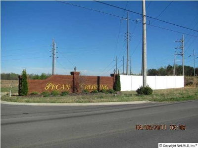 Marshall County, Jackson County Residential Lots & Land For Sale: 158 Bonny Brook Lane