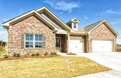 Priceville Single Family Home For Sale: 41 NE Shadow Mountain