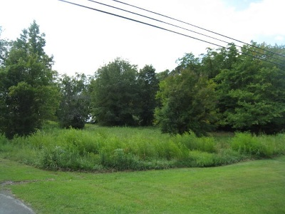 Rainsville Residential Lots & Land For Sale: 781 Main Street West