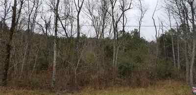 Fort Payne Residential Lots & Land For Sale: County Road 275