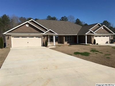 Hazel Green Multi Family Home For Sale: 213 Fern Bank Drive #A &