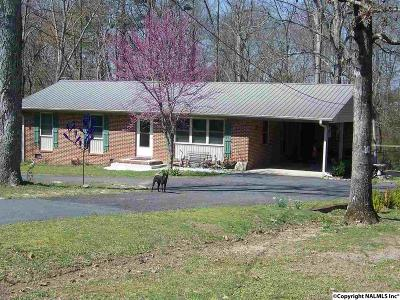 Rainsville Single Family Home For Sale: 224 Sand Mountain Drive