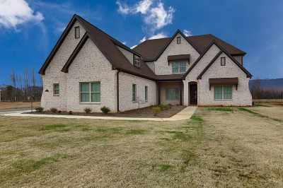Single Family Home For Sale: 3040 Ginn Point Road