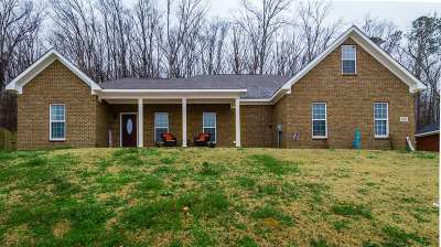 Decatur Single Family Home For Sale: 83 Amber Way