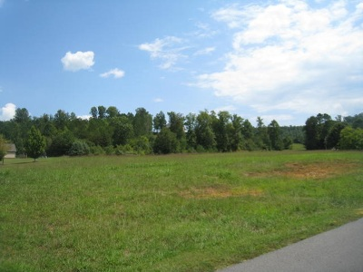 Valley Head Residential Lots & Land For Sale: County Road 606