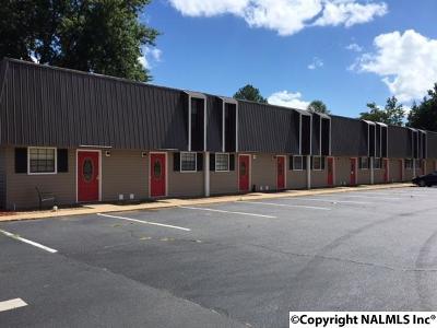 Rainsville Multi Family Home For Sale: 42 Vista View Drive