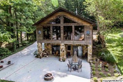 Scottsboro Single Family Home For Sale: 1043 Skyline Shores Drive
