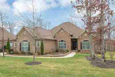 Madison County Rental For Rent: 8 Bluff View Drive