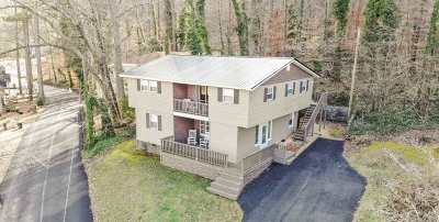 Guntersville Single Family Home For Sale: 4125 Hideaway Drive