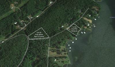Residential Lots & Land For Sale: 555555 Pine Island Circle