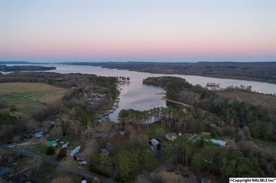 Guntersville Residential Lots & Land For Sale: 31 Wray Road