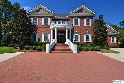 Single Family Home For Sale: 135 Belle Ridge Drive