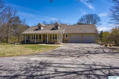 Fort Payne Single Family Home For Sale: 1510g Adamsburg Road