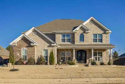 Single Family Home For Sale: 104 Rockgage Drive