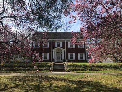 Albertville Single Family Home For Sale: 707 Baltimore Avenue