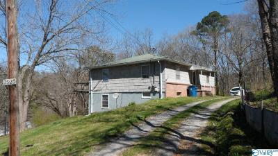 Hokes Bluff Single Family Home For Sale: 2925 Wester Street