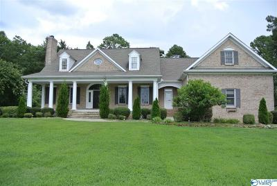 Single Family Home For Sale: 863 Hughes Road