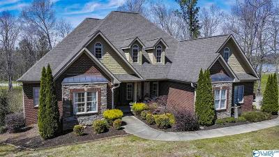 Fort Payne Single Family Home For Sale: 6904 Portobello Road