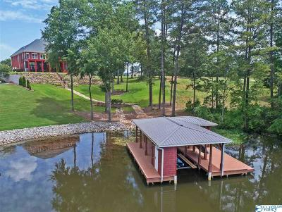 Marshall County, Jackson County Single Family Home For Sale: 1688 Peninsula Drive