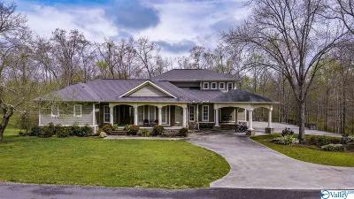 Rainsville Single Family Home For Sale: 186 Bobo Hollow Drive
