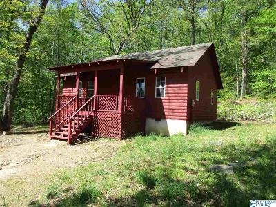 Fort Payne Single Family Home For Sale: 470 County Road 153