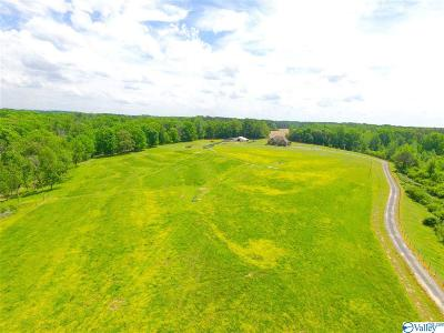 Collinsville Single Family Home For Sale: 5631 County Road 446