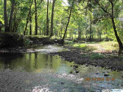 Gaylesville Residential Lots & Land For Sale: 1865 County Road 99