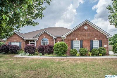 New Market Single Family Home For Sale: 133 Tellico Ridge Road