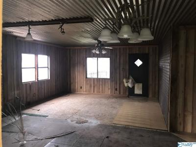 Marshall County, Jackson County Single Family Home For Sale: 824 Shin Point Road