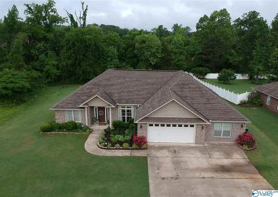 Decatur Single Family Home For Sale: 150 Emory Drive