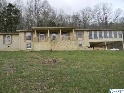 Single Family Home For Sale: 176 Ymca Drive