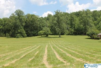 Valley Head AL Residential Lots & Land For Sale: $35,000