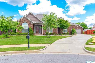 Huntsville Single Family Home For Sale: 114 Natures View Lane