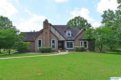 Hartselle Single Family Home For Sale: 1656 Iron Man Road