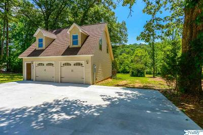 Marshall County Single Family Home For Sale: 3590 Scottsboro Hwy 79