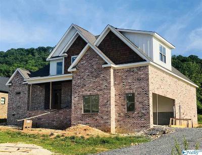 Guntersville Single Family Home For Sale: 125 Lake Creek Drive