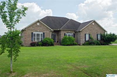 Meridianville Single Family Home For Sale: 172 Pike Parvin Road