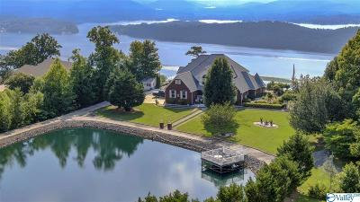 Single Family Home For Sale: 1573 Scenic Drive